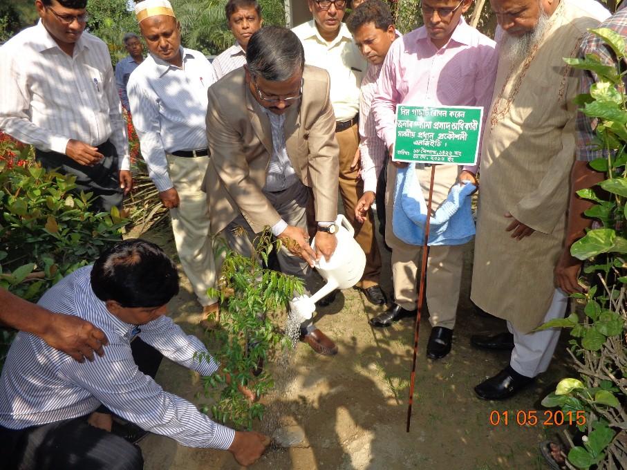 Tree Plantation by Mr. Shyama Prosad Adhikari, Chief Engineer of LGED at LGED Tangail Campus on 01/05/15 preside